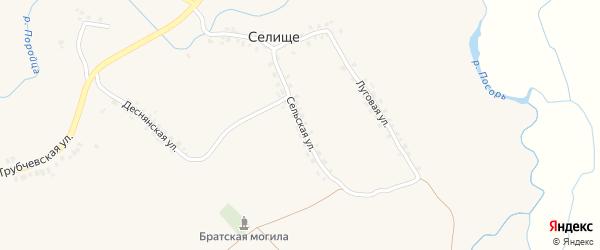 Сельская улица на карте поселка Селища с номерами домов