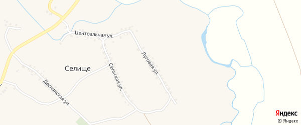 Луговая улица на карте поселка Селища с номерами домов