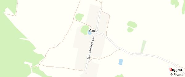 Центральная улица на карте поселка Алеса с номерами домов