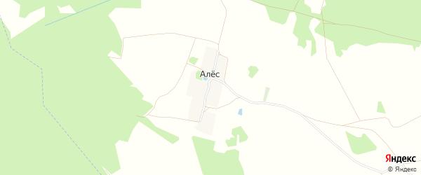 Карта поселка Алеса в Брянской области с улицами и номерами домов