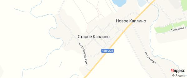 Карта деревни Старое Каплино в Брянской области с улицами и номерами домов
