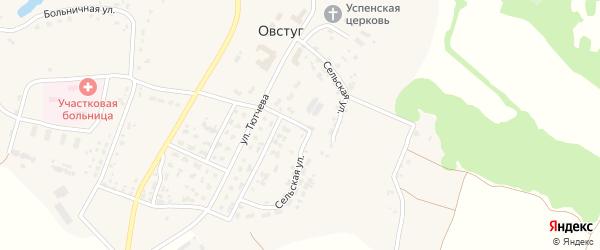 Сельская улица на карте села Овстуга с номерами домов