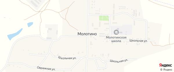 Территория сдт Приозерное на карте деревни Молотино с номерами домов