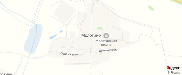Карта деревни Молотино в Брянской области с улицами и номерами домов