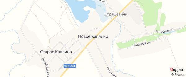 Карта деревни Новое Каплино в Брянской области с улицами и номерами домов