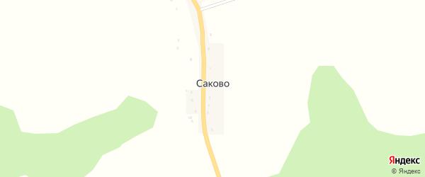 Улица Ани Горностаевой на карте деревни Саково с номерами домов