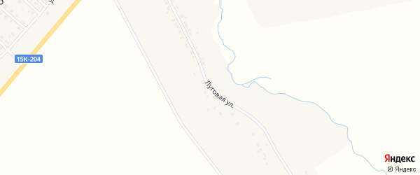 Луговая улица на карте деревни Новое Каплино с номерами домов