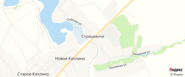 Карта села Страшевичи в Брянской области с улицами и номерами домов
