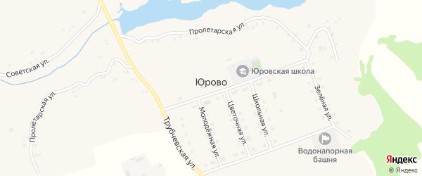 Цветочная улица на карте села Юрово с номерами домов