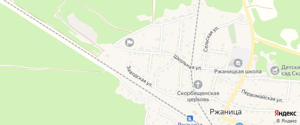 Молодежная улица на карте села Ржаницы с номерами домов