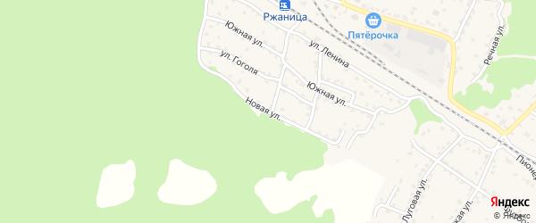 Новая улица на карте села Ржаницы с номерами домов