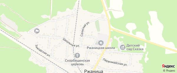 Сельский переулок на карте села Ржаницы с номерами домов
