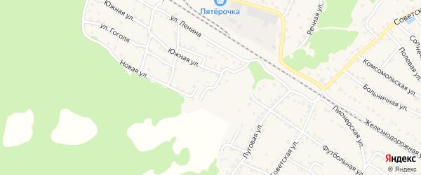 1-й Южный переулок на карте села Ржаницы с номерами домов