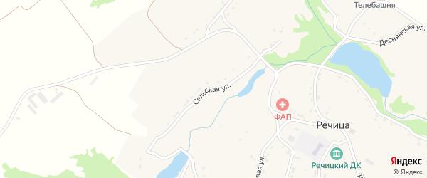 Сельская улица на карте села Речицы с номерами домов