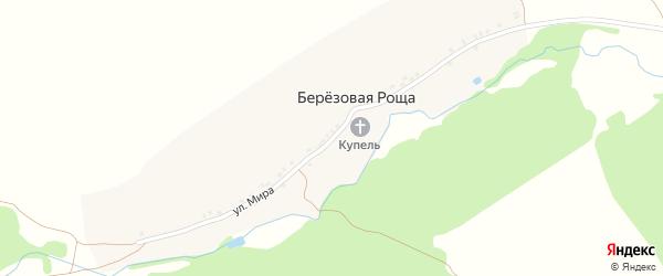 Улица Мира на карте деревни Березовой Рощи с номерами домов