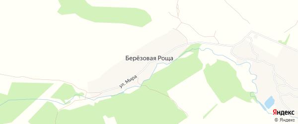 Карта деревни Березовой Рощи в Брянской области с улицами и номерами домов