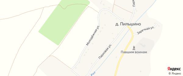 Молодежная улица на карте деревни Пильшино с номерами домов