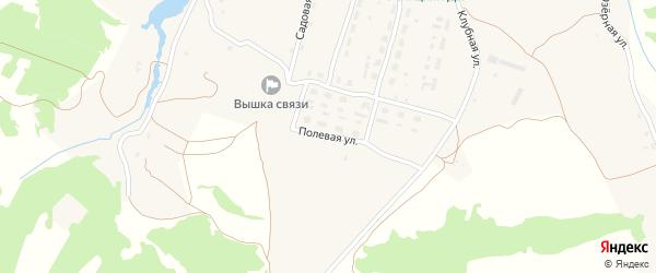 Полевая улица на карте села Речицы с номерами домов