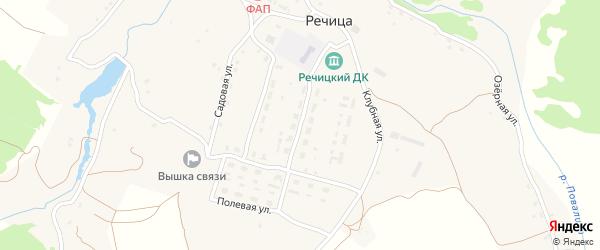 Центральная улица на карте села Речицы с номерами домов