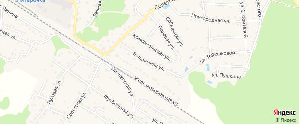 Больничная улица на карте села Ржаницы с номерами домов