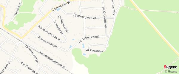 Улица Терешковой на карте села Ржаницы с номерами домов