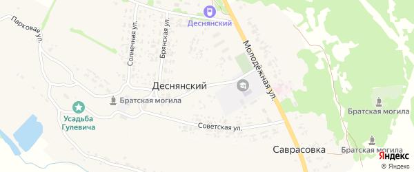 Школьная улица на карте Деснянского поселка с номерами домов
