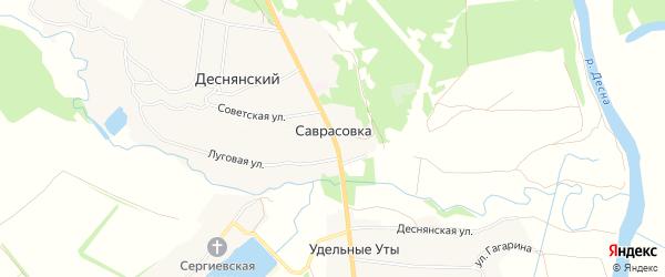 Карта деревни Саврасовки в Брянской области с улицами и номерами домов