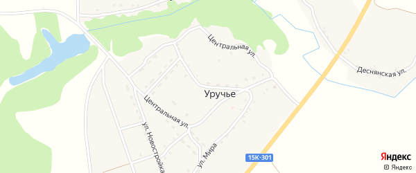 Центральная улица на карте села Уручья с номерами домов