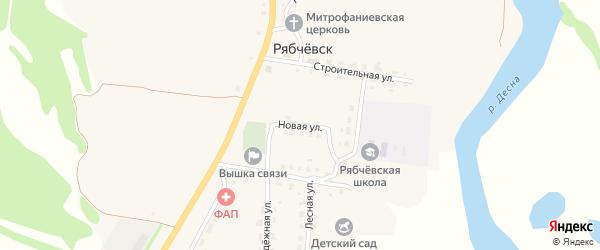 Новая улица на карте села Рябчевска с номерами домов
