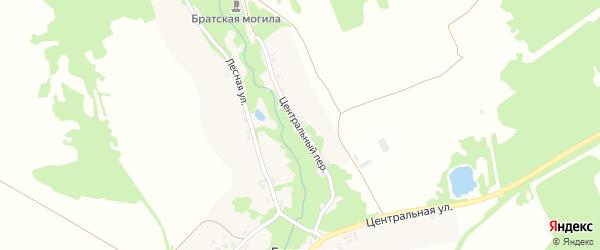 Центральный переулок на карте села Горожанки с номерами домов