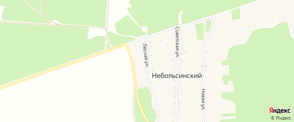 Лесная улица на карте Небольсинского поселка с номерами домов