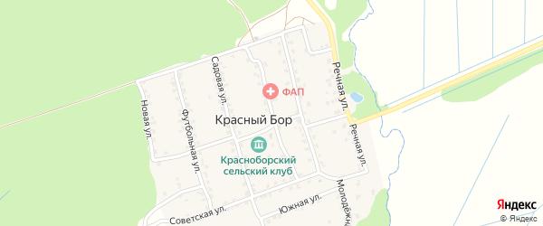 Школьная улица на карте поселка Красного Бора с номерами домов