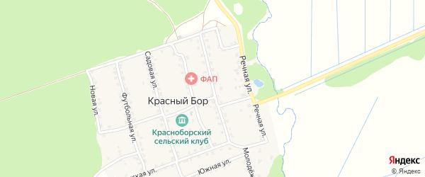 Центральная улица на карте поселка Красного Бора с номерами домов