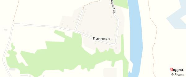 Первомайская улица на карте деревни Липовки с номерами домов