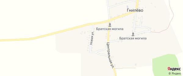 Новая улица на карте села Гнилево с номерами домов