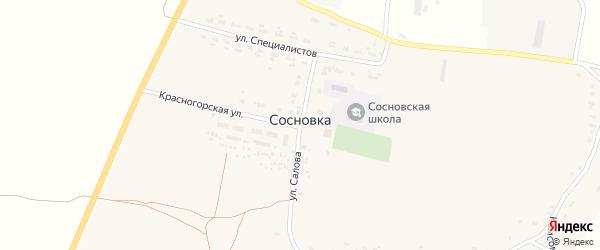 Улица Салова на карте села Сосновки с номерами домов