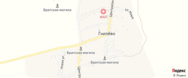 Трубчевская улица на карте села Гнилево с номерами домов