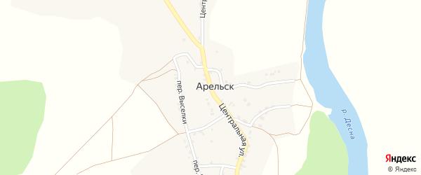 Центральная улица на карте села Арельска с номерами домов