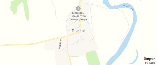 Карта села Гнилево в Брянской области с улицами и номерами домов