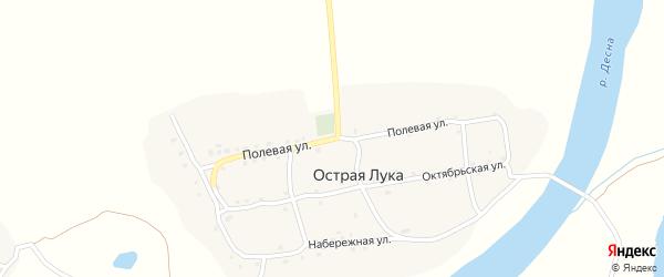 Полевая улица на карте деревни Острой Луки с номерами домов