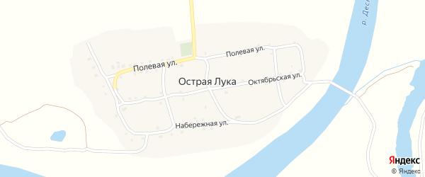 Октябрьская улица на карте деревни Острой Луки с номерами домов