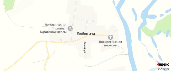 Карта села Любожичи в Брянской области с улицами и номерами домов