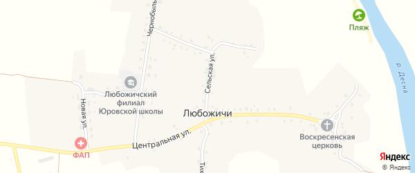 Сельская улица на карте села Любожичи с номерами домов