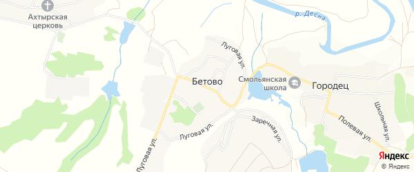 Карта деревни Бетово в Брянской области с улицами и номерами домов