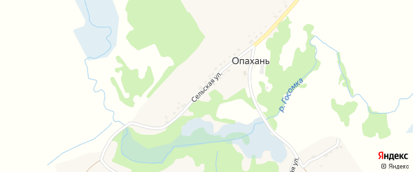Сельская улица на карте села Опахани с номерами домов