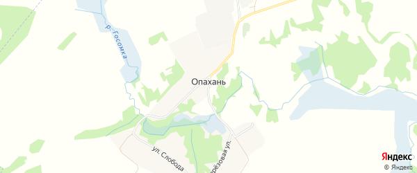 Карта села Опахани в Брянской области с улицами и номерами домов