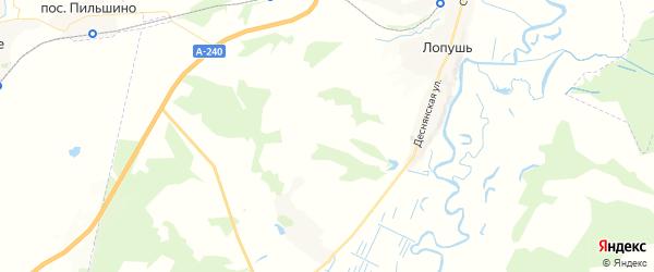 Карта территории Лопушского сельского поселения Брянской области с районами, улицами и номерами домов
