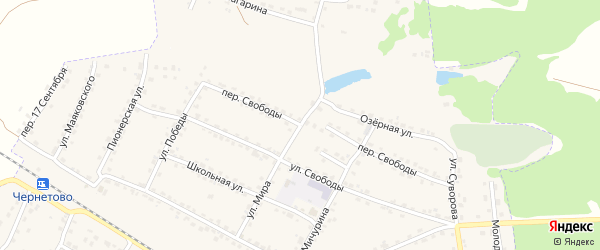 Переулок Свободы на карте Сельца с номерами домов