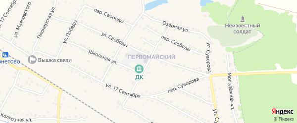 Улица Мичурина на карте Сельца с номерами домов