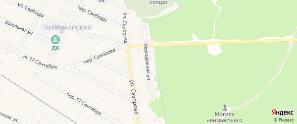 Молодежная улица на карте Сельца с номерами домов
